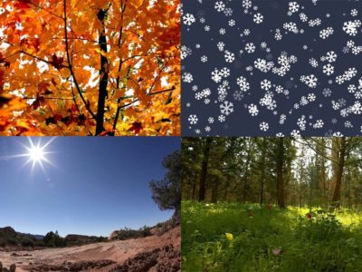 4 Different Seasons