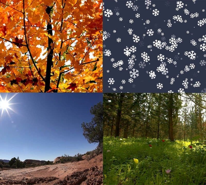 4 Different Seasons